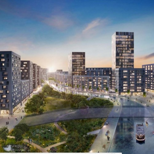 Huge Old Oak Common regeneration