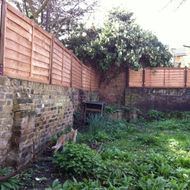 Erection of wooden fence above rear, side boundary walls