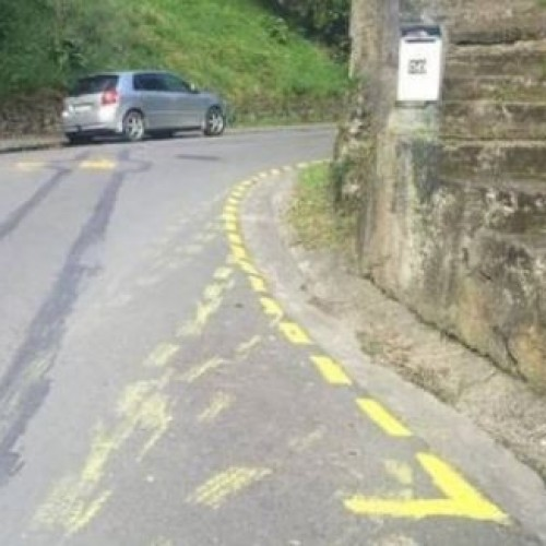 New Zealander paints his own parking restrictions.