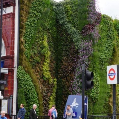 Neo-walled gardens