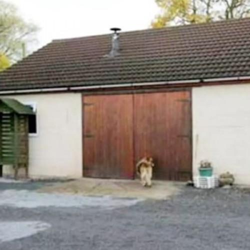 Garage as a House