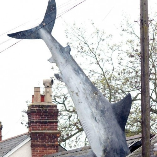 House with 25ft great white shark on its roof.