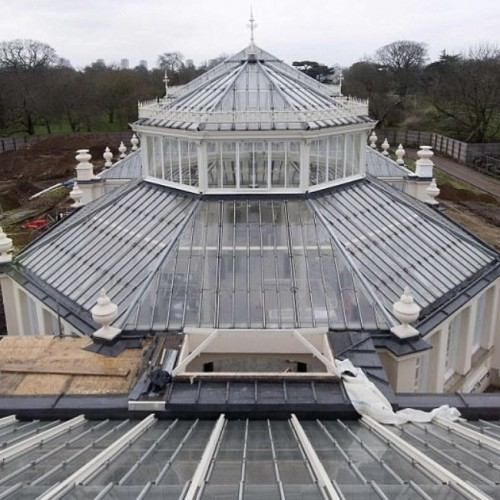 Royal Botanic Gardens restoration project